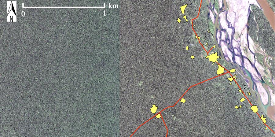 Via OXY (El Eden Yuturi,  Bloque 12, Petroamazonas). Pappalardo SE, (2009), Conservazione della Biodiversità e Conflitti Ambientali nella Regione Amazzonica Ecuadoriana: il caso della Riserva della Biosfera Yasuni, Tesi di Laurea, Università di Padova