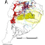 """Relacion entre la """"Zona Intervenida"""" y la densidad de los pozos a nivel de Region Amazonica Ecuatoriana"""