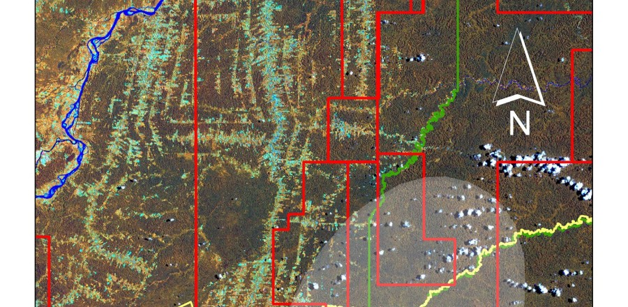 Land cover map (Landsat ETM+, 2002) of the Via Auca territory and anthropic pressures on the Zona Intangible and the uncontacted indigenous group. Deforestation processes developed by road systems around the Via Auca main axis, African Palm cultivations (yellow areas at the north sector), Zona Intangible Tagaeri Taromenane, Armadillo uncontacted clan and oil blocks.